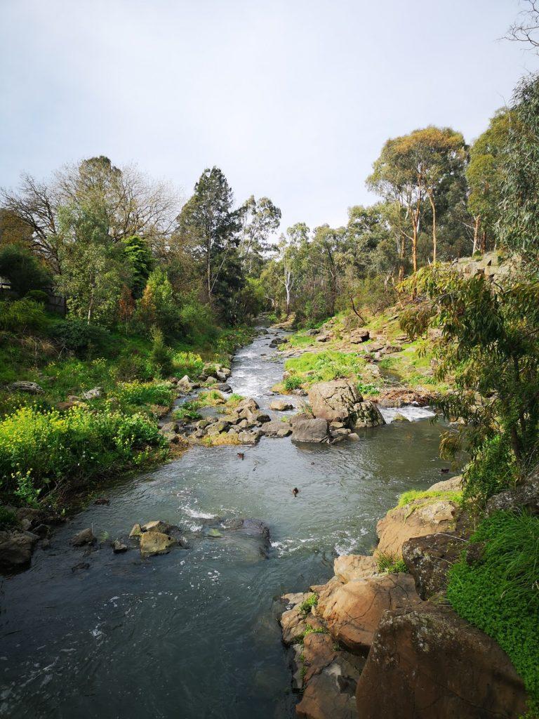 Darebin Creek